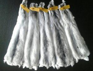 Меховой стандарт окраса Белый Вильсон