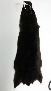 Крашеная шкурка натурального меха шиншиллы