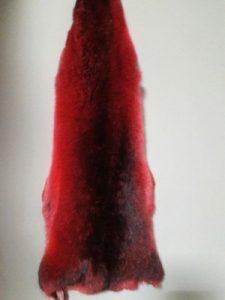 Красные шкурки шиншиллы